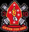 3rd Bn, 10th Marine Regiment (3/10), 10th Marine Regiment